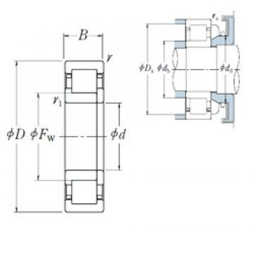 70 mm x 110 mm x 20 mm  NSK NUP1014 cylindrical roller bearings