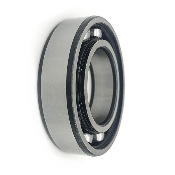 Wm Superior Quality Deep Groove Ball Bearings (6004 2RS) #1 image